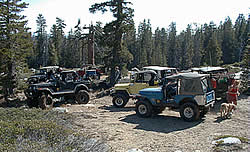 Jeeps just starting out